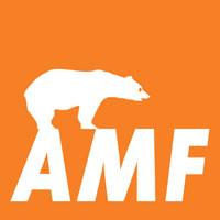 Подвесные потолки Knauf AMF